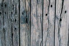 Fond en bois de texture de cru Photos libres de droits