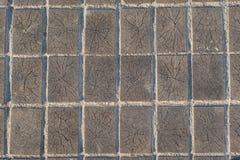 Fond en bois de texture de trottoir de bois de construction de blocs Photo stock