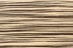 Fond en bois de texture de zèbre Photo stock