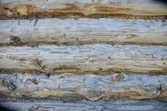 Fond en bois de texture, grains de conseil en bois, planches rayées de vieux plancher Photographie stock