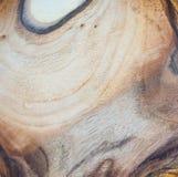 fond en bois de texture de noix dans la macro pousse de lentille images stock