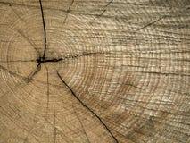 Fond en bois de tronçon image stock