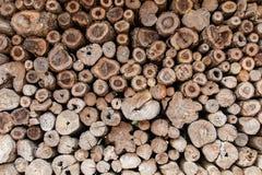 Fond en bois de tronçon de teck rond image libre de droits