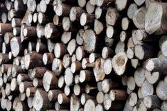 Fond en bois de tuile photographie stock libre de droits