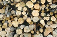 Fond en bois empilé par bois de chauffage rond Photos libres de droits