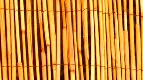 Fond en bois en bambou jaune de texture Photos libres de droits