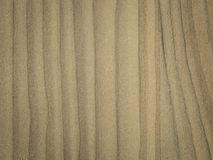 Fond en bois en stratifié de texture Photos stock