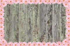 Fond en bois encadré avec des roses Image libre de droits