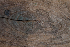 Fond en bois foncé grunge de texture Photographie stock libre de droits