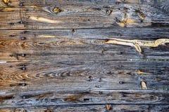 Fond en bois gris de texture Images stock