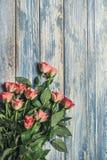 Fond en bois grunge avec le bouqet rose de roses Photos stock