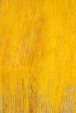 Fond en bois jaune grunge de texture Images stock