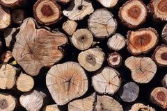 Fond en bois naturel de rondins Photos libres de droits