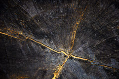 Fond en bois noir Image stock