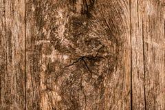 Fond en bois noué Photographie stock libre de droits