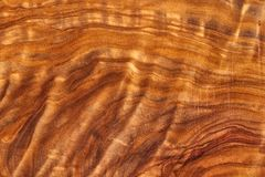Fond en bois olive de texture Images libres de droits