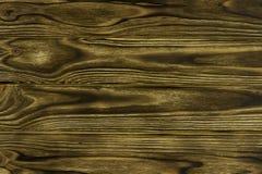 Fond en bois roussi d'arbre brûlé par texture Image stock