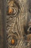Fond en bois texturisé Images stock