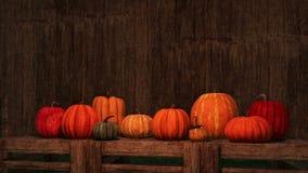 Fond en bois vide de potirons d'automne de thanksgiving illustration de vecteur