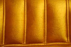 Fond en cuir Images libres de droits