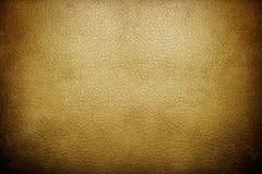 Fond en cuir Photographie stock libre de droits