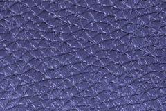 Fond en cuir bleu profond de texture pour la conception Images stock