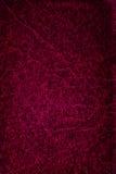 Fond en cuir grunge rouge de texture Photographie stock