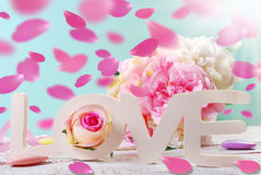 Fond en pastel d'amour avec les pétales de rose en baisse Photographie stock