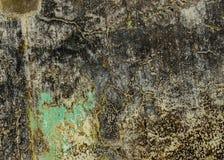 Fond en pierre approximatif de texture de moule Image stock
