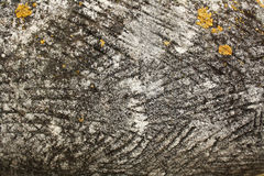 Fond en pierre brun gris de texture images stock