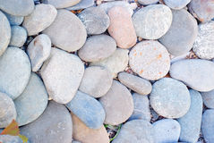 Fond en pierre de mer Photos libres de droits