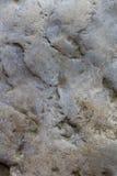 Fond en pierre de texture Photo libre de droits