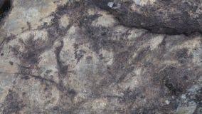 Fond en pierre de texture Photographie stock libre de droits