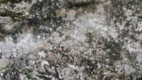 Fond en pierre gris de texture Photos libres de droits
