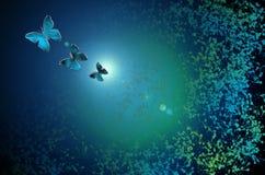 Fond en verre abstrait de modèle de papillon Photos stock