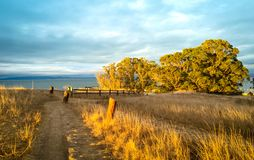 Fond ensoleillé de nature d'automne avec le chemin de marche, g d'or images stock