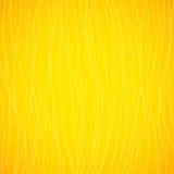Fond ensoleillé peint lumineux abstrait de cheveu Photos stock