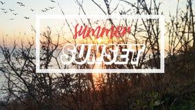 Fond et affiche de coucher du soleil d'été illustration stock