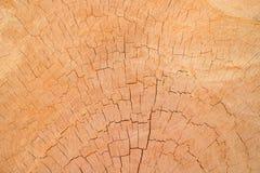 Fond et textrue en bois photo libre de droits