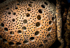 Fond et texture abstraits Photo libre de droits