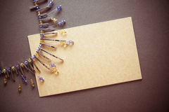 Fond exotique avec des perles en métal Images libres de droits