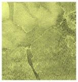 Fond expressif de course de brosse d'aquarelle de tige de poivre Texture de papier artistique peinte ? la main illustration libre de droits