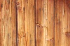 Fond extérieur en bois de texture de nature Photos stock