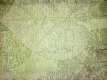 Fond feuillu vert Image libre de droits