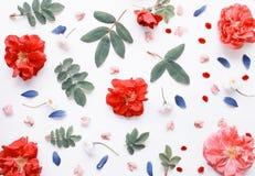 Fond floral étendu par appartement romantique Photo stock