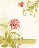 Fond floral. Photographie stock libre de droits