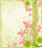 Fond floral. Photos libres de droits