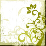 Fond floral Photo stock