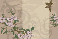 Fond floral. Images libres de droits