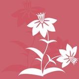Fond floral abstrait Images libres de droits